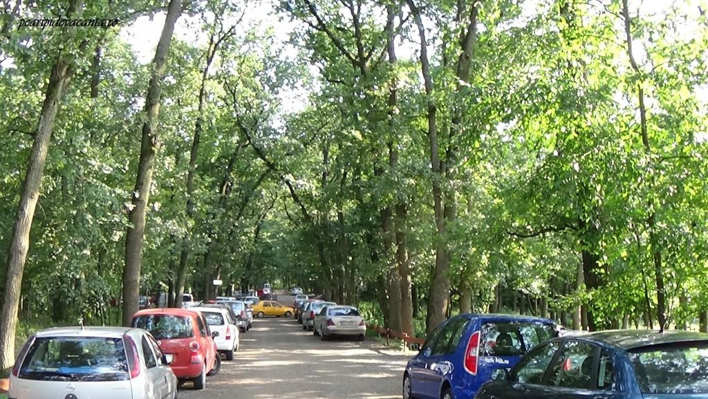 parcare Gradina Zoologica Targu Mures