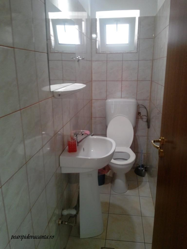 toaleta de serviciu1