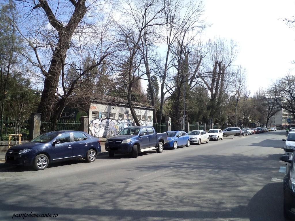 Intrarea din Schitu Magureanu