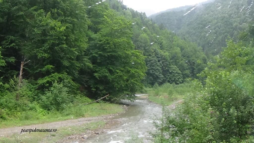 Ploaie in Maramures