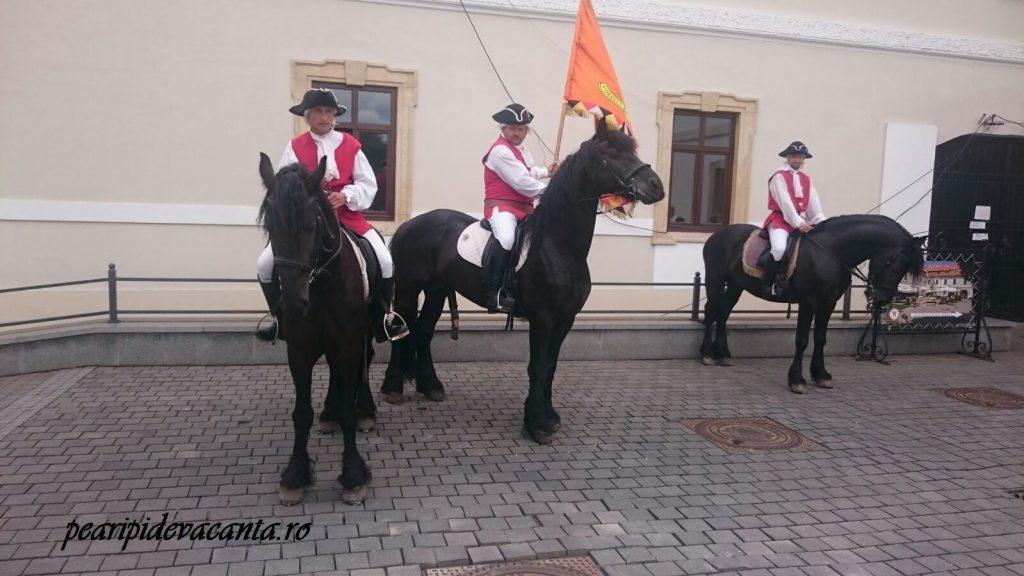 Cetatea Alba Iulia - Garda