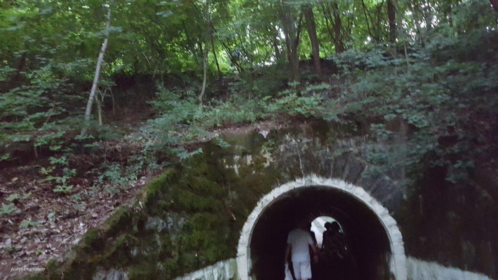 Tunel spre Padurea Felix