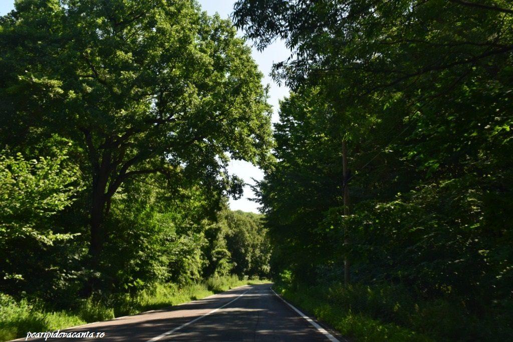 Traseu Bucuresti-Tulcea