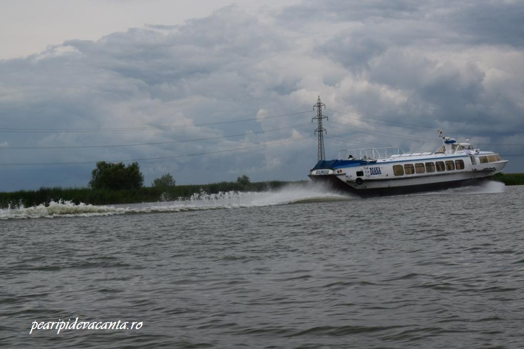 Nava Diana Tulcea-Sulina